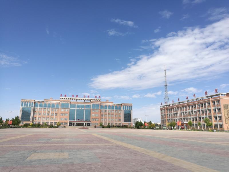 枣庄学院赴新疆调研支教工作看望西部计划志愿者